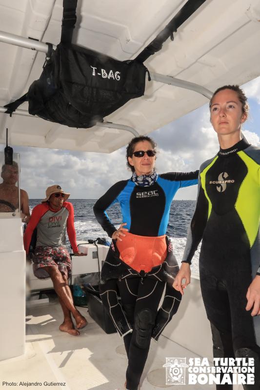 SEA TURTLE CONSERVATION BONAIRE (STCB) TA ANUNSIÁ SU MANAGER NOBO