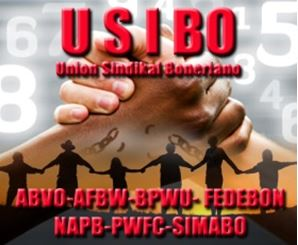 PROMÉ BOLETIN INFORMATIVO DI USIBO PA 2020
